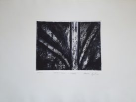 Yago, Untitled 225, 2000, engraving on paper, 70×50, 225