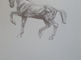 Yago, Untitled 176, 1997, drawing on paper, 50×70, 176